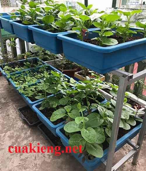 Bộ trồng giàn rau mầm 6 khay bằng sắt - Giá giỏ sắt móc treo giàn chậu hoa ban công HCM